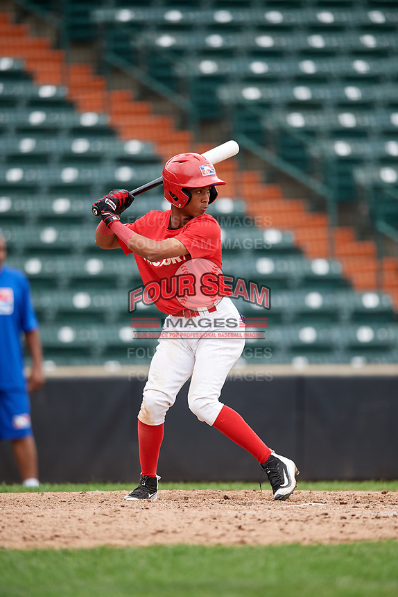 Fran Alduey (3) at bat during the Dominican Prospect League Elite Underclass International Series, powered by Baseball Factory, on July 21, 2018 at Schaumburg Boomers Stadium in Schaumburg, Illinois.  (Mike Janes/Four Seam Images)
