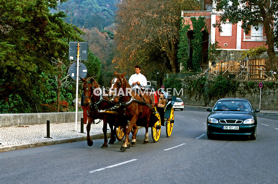 Transporte em charrete em Sintra, Portugal. 1999. Foto de Juca Martins.