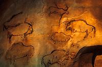 Europe/France/Midi-Pyrénées/09/Ariège/Parc pyrénéen de l'art préhistorique/Tarascon-sur-Ariège: Reproduction des peintures préhistoriques de Niaux [Non destiné à un usage publicitaire - Not intended for an advertising use]