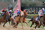 """The 3rd race at Oaklawn featured 11 horses as Calvin Borel is in the center riding """"Atticus The Man"""" going for his 5000th win. Feb.18, 2013 - Hot Springs, Arkansas, U.S - (Credit Image: © Justin Manning/Eclipse/ZUMAPRESS.com).The 48th Running of the Southwest Stakes. Feb.18, 2013 - Hot Springs, Arkansas, U.S - (Credit Image: © Justin Manning/Eclipse/ZUMAPRESS.com)"""