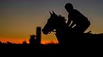 January 22, 2021: A horse jogs before sunrise as horses prepare for the 2021 Pegasus World Cup Invitational at Gulfstream Park in Hallandale Beach, Florida. Scott Serio/Eclipse Sportswire/CSM