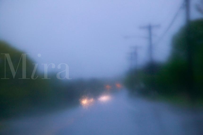 Wet road driving hazard.