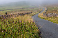 UK, England.  Yorkshire Dales Roadway in the Autumn Mist.