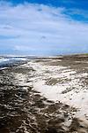 "Spindrift lines the beach on a windy spring day.  Long Beach, Washington, ""The World's Longest Beach"". Olympic Peninsula"