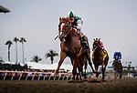 August  02 2014: Skip Tony with Rafael Bejarano up wins an allowance race at Del Mar Race Track in Del Mar CA. Alex Evers/ESW/CSM