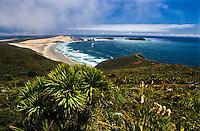 Cape Maria van Diemen on the very top of New Zealand - Northland, New Zealand