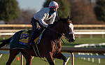 November 4, 2020: Tiz The Law, trained by trainer Barclay Tagg, exercises in preparation for the Breeders' Cup Classic at Keeneland Racetrack in Lexington, Kentucky on November 4, 2020. Carolyn Simancik/Eclipse Sportswire/Breeders Cup
