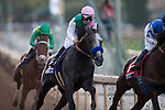 ARCADIA, CA - NOVEMBER 05: Arrogate #10, ridden by Mike Smith, is entering the 1st turn in the Breeders' Cup Classic during day two of the 2016 Breeders' Cup World Championships at Santa Anita Park on November 5, 2016 in Arcadia, California. (Photo by Kaz Ishida/Eclipse Sportswire/Breeders Cup)