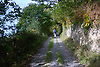 West Wales, Walking<br /> <br /> Stock Photo by Paddy Bergin