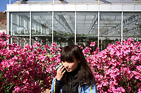China. Jilin Province. A schoolgirl visiting an agricultural shopping centre in the town of Yanji, close to the border with North Korea. The town is part of the Korean Autonomous Prefecture in the north-east of the country. 2011