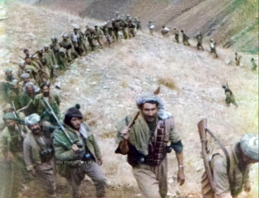 Iraq 1980 .Peshmergas with Akram Herki on their way to Kurdistan Iraq .Irak 1980 .Peshmergas de Akram Herki en route pour le Kurdistan irakien