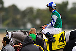 ELMONT, NY - OCTOBER 08: Javier Castelano, atop Anchor Down #4, approaching the Winners Circle, after winning the 36th Running of The Kelso, on Jockey Club Gold Cup Day at Belmont Park on October 8, 2016 in Elmont, New York. (Photo by Douglas DeFelice/Eclipse Sportswire/Getty Images)
