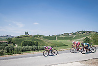 the breakaway group speeding down<br /> <br /> 'La Primavera' (Spring) in summer!<br /> 111st Milano-Sanremo 2020 (1.UWT)<br /> 1 day race from Milano to Sanremo (305km)<br /> <br /> the postponed edition > exceptionally held in summer because of the Covid-19 pandemic calendar reshuffle