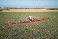 Applying liquid nitrogen to winter wheat - Lincolnshire, February