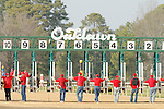 Oaklawn starting gate before the running of the Honeybee Stakes (Grade III) at Oaklawn Park in Hot Springs, Arkansas-USA on March 8, 2014. (Credit Image: © Justin Manning/Eclipse/ZUMAPRESS.com)