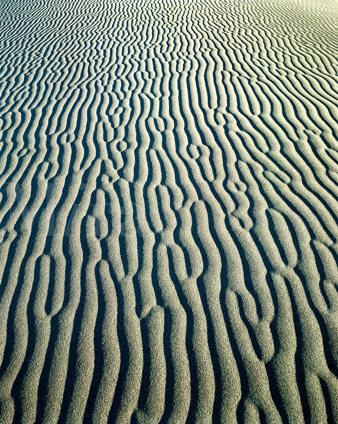 USA, California, Death Valley National Monument. Detail of sand ripple