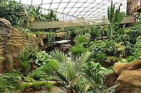 Riesentropenhalle Gondwanaland im Leipziger Zoo kurz vor der Eröffnung, auf über 16.000 qm werden exotische Tiere und Pflanzen von verschiedenen Erdteilen gezeigt - in der Tropenerlebniswelt gibt es neben einer Höhle für nachtaktive Tiere noch eine Bootsfahrt durch den Regenwald und einen Baumwipfelpfad als Attraktionen - im Bild: Blick in die grüne Vielfalt . Foto: aif / Norman Rembarz..Jegliche kommerzielle wie redaktionelle Nutzung ist honorar- und mehrwertsteuerpflichtig! Persönlichkeitsrechte sind zu wahren. Es wird keine Haftung übernommen bei Verletzung von Rechten Dritter. Autoren-Nennung gem. §13 UrhGes. wird verlangt. Weitergabe an Dritte nur nach  vorheriger Absprache. Online-Nutzung ist separat kostenpflichtig..