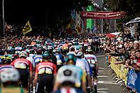 huge crowds up the Wijnpersstraat<br /> <br /> Elite Men World Championships - Road Race<br /> from Antwerp to Leuven (268.3km)<br /> <br /> UCI Road World Championships - Flanders Belgium 2021<br /> <br /> ©kramon
