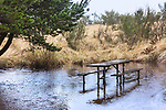 Rain pours on picnic table in campsite at Grayland Beach State Park in Washington Sate.  March, spring, weather.