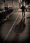 12.31.11 - Evening Stroll...