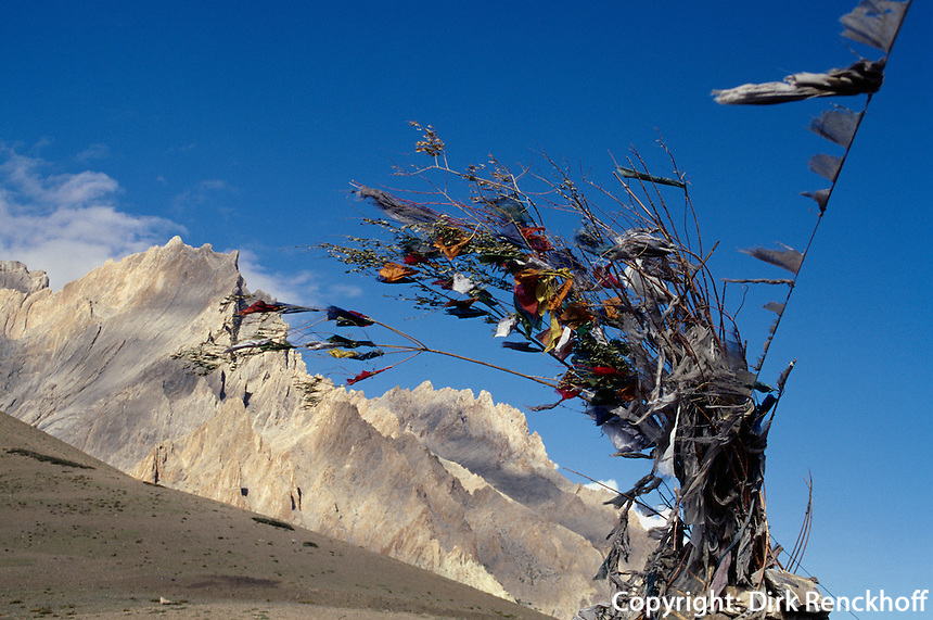 Gebetsfahnen in Ladakh (Jammu+Kashmir), Indien