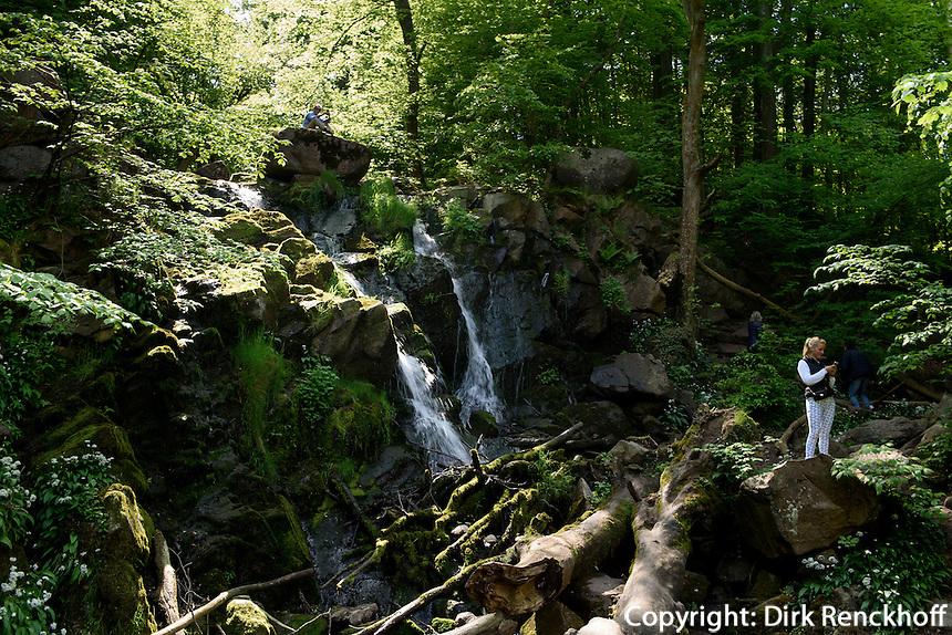 Wasserfall im Døndal (Donnertal) auf der Insel Bornholm, Dänemark, Europa<br /> waterfall in Døndal, Isle of Bornholm Denmark