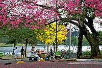 Vegetação do Parque do Ibirapuera. São Paulo. 1995. Foto de Juca Martins.