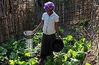 LAO P.D.R., province Oudomxay , village Houyta, ethnic group Khmu, project for water supply and sanitation by  CDEA, woman Ann watering her vegetable garden with waste water / LAOS, Provinz Oudomxay, Dorf Houyta , Ethnie Khmu , CDEA Projekt Wasserversorgung und sanitaere Einrichtungen fuer Bergdoerfer , Frau An bewaessert mit Abwasser ihren Gemuesegarten am Haus - NUR FÜR REDAKTIONELLE NUTZUNG, Kein PR !