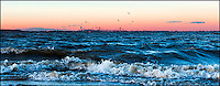 A perfect moment at sunset: rough sea, flying birds, and the warm cast on Manhattan skyline and Verrazano Bridge.
