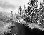 Sierra Mountains Winter