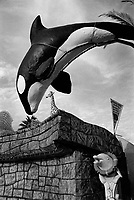 Spain. Valencian Community. Oropesa del Mar. The project of Marina d'Or (Ciudad de Vacaciones)) began in the mid-1990s. At first it looked like a traditional tourist urbanization, but in less than 15 years it became a major tourist project. Fake artificial animals near a campground's swimming pool. A killer whale, a dolphin and a giraffe. The killer whale or orca (Orcinus orca) is a toothed whale belonging to the oceanic dolphin family, of which it is the largest member. Killer whales are apex predators, as no animal preys on them. A cosmopolitan species, they can be found in each of the world's oceans in a variety of marine environments. Dolphin is a common name of aquatic mammals within the order Cetacea. The term dolphin usually refers to the extant families Delphinidae (the oceanic dolphins), Platanistidae (the Indian river dolphins), Iniidae (the new world river dolphins), and Pontoporiidae (the brackish dolphins), and the extinct Lipotidae (baiji or Chinese river dolphin). There are 40 extant species named as dolphins. The giraffe (Giraffa) is a genus of African even-toed ungulate mammals, the tallest living terrestrial animals and the largest ruminants. The genus currently consists of one species, Giraffa camelopardalis, the type species. Oropesa del Mar (Valencian: Orpesa) is a municipality in the comarca of Plana Alta in the Valencian Community. An autonomous community is a first-level political and administrative division, created in accordance with the Spanish constitution of 1978, with the aim of guaranteeing limited autonomy of the nationalities and regions that make up Spain. 13.09.2018 © 2018 Didier Ruef