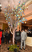PASADENA, CA - JANUARY 17: Atmosphere at the National Geographic 2020 TCA Winter Press Tour Party at the Langham Huntington on January 17, 2020 in Pasadena, California. (Photo by Frank Micelotta/National Geographic/PictureGroup)