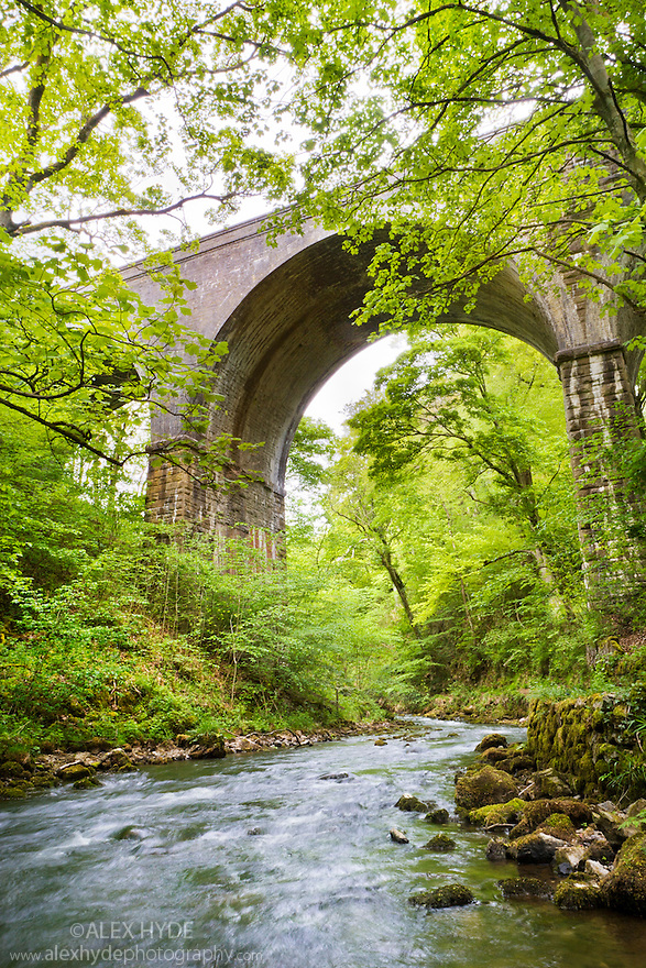 River Wye running under the Monsal Trail viaduct at Miller's Dale. Peak District National Park, May.