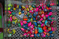 Yogyakarta, Java, Indonesia.  Painted Hermit Crabs for Sale in the Bird Market.