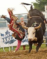 rodeo West Elgin, 2011