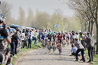 peloton over the Paddestraat cobbles<br /> <br /> 101th Ronde Van Vlaanderen 2017 (1.UWT)<br /> 1day race: Antwerp › Oudenaarde - BEL (260km)