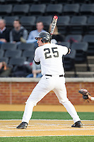 Matt Conway (25) of the Wake Forest Demon Deacons at bat against the Maryland Terrapins at Wake Forest Baseball Park on April 4, 2014 in Winston-Salem, North Carolina.  The Demon Deacons defeated the Terrapins 6-4.  (Brian Westerholt/Four Seam Images)