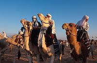Kamelreiter, Festival in Douz, Tunesien