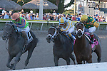 Palice Malice and jockey John Velasquez(yellow cap) hang on to edge out Golden Ticket (orange cap) and Uncaptured (middle)to win the Gulfstream Park Handicap (G2). Gulfstream Park, Hallandale Beach Florida. 02-08-2014
