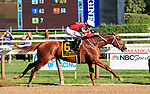 Gun Runner (no.6) wins the Grade I 2017 Whitney Stakes  August 5 at Saratoga Race Course, Saratoga Springs, NY.  The winner, ridden by Florent Geroux and trained by Steve Asmussen, won by 5 lengths in the 1 1/8 mile race against 6 opponents.  Gun Runner finished the race with another horse's thrown shoe entangled in his tail.  (Bruce Dudek/Eclipse Sportswire)