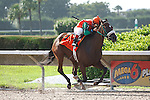 Candy Coded Kisses with jockey Cecilio Penalba cruise to victory at odds of 24-1, in the Desert Vixen Division of the Florida Stallion Stakes of 2012 at Calder Race Course, Miami Gardens Florida. 07-28-2012. Arron Haggart/Eclipse Sportswire.