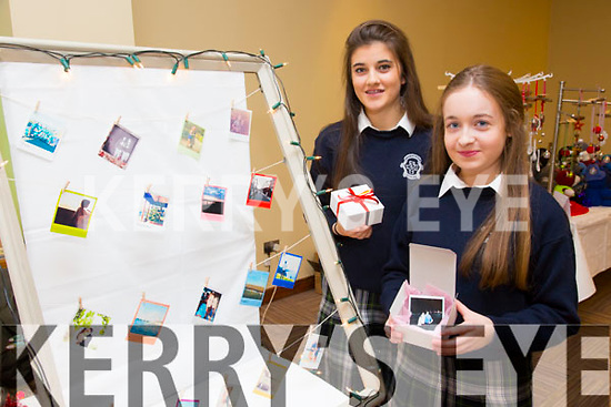 Transition Year Students Maria Daly and Lauren Kelly from Presentation Secondary School with their Project Instant Cuimhne (Instant Memories)  at the Arty Bits Christmas Craft Fair in the Fels Point Hotel on Sunday
