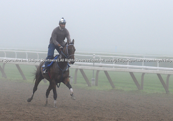 16 August 2008: 2007 Morning workouts in the fog at Saratoga Race Course in Saratoga Springs, New York.