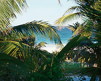 The house is set in a grove of palm trees with views over the azure sea and the white beaches of Harbour Island