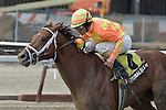 """Sensational Slam, ridden by Ramon Dominguez, wins the 110th running of the Fred """"Cappy"""" Capossela Stakes for trainer Tood Pletcher and owner Bobby Flay."""