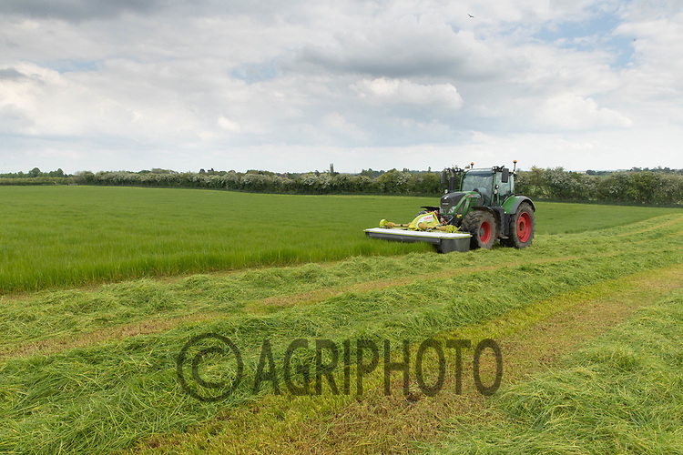 27-5-2021 Contractors mowing grass for silage in Northamptonshire <br /> ©Tim Scrivener Photographer 07850 303986<br />      ....Covering Agriculture In The UK....