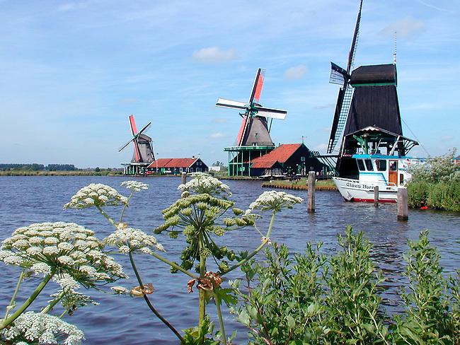 Windmills at Volendam, Netherlands