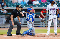 Rocket City Trash Pandas catcher Anthony Mulrine (36) on defense against the Tennessee Smokies at Smokies Stadium on June 12, 2021, in Kodak, Tennessee. (Danny Parker/Four Seam Images)