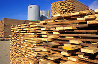 Air drying lumber stacks at mill, Yreka, California