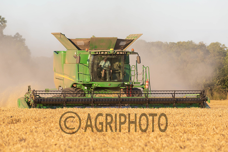 Harvesting Winter wheat in Lincolnshire<br /> ©Tim Scrivener Photographer 07850 303986<br />      ....Covering Agriculture In The UK....